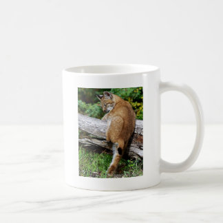 Siberian Lynx Kitten - It's so High!!!! Coffee Mug