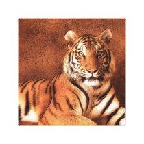 Siberian Tiger Art - Canvas