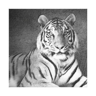 Siberian Tiger Art in Black and White - Canvas