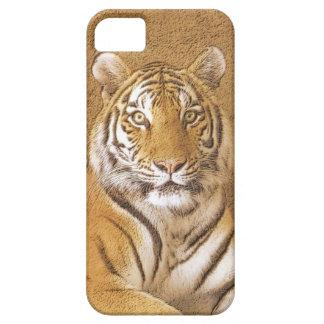 Siberian Tiger Art - iPhone 5 Case