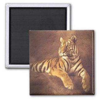 Siberian Tiger Art - Refrigerator Magnet