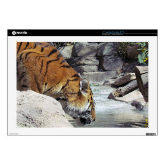 "Siberian Tiger Drinking from a Stream Skins For 17"" Laptops"