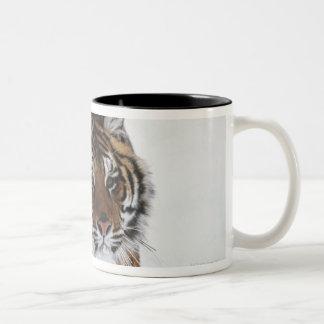 Siberian Tiger In Snow Mug