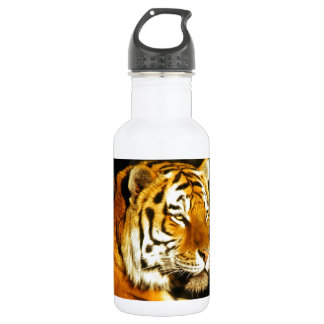 Siberian Tiger in the evening Stainless Steel Water Bottle
