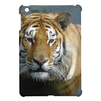Siberian tiger in the water iPad mini case