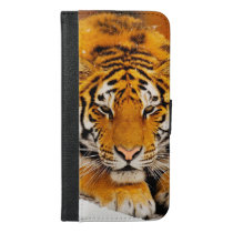 Siberian Tiger iPhone 6/6s Plus Wallet Case