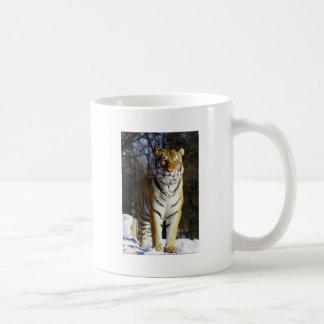 Siberian Tiger Coffee Mugs