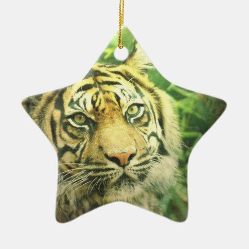 Siberian Tiger Ornament
