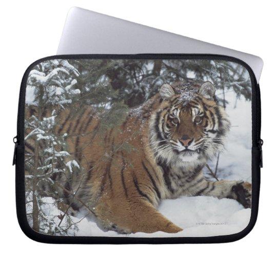 Siberian Tiger (Panthera Tigris Altaica) Laptop Sleeve
