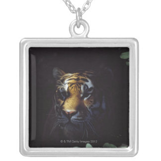 Siberian Tiger (Panthera Tigris Altaica) Peers Silver Plated Necklace