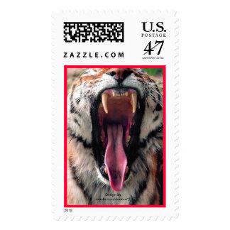 Siberian Tiger  (Panthera tigris altaica) yawn Postage