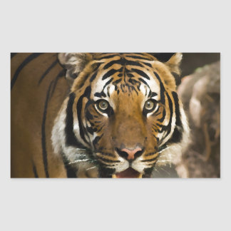 Siberian Tiger Rectangular Sticker