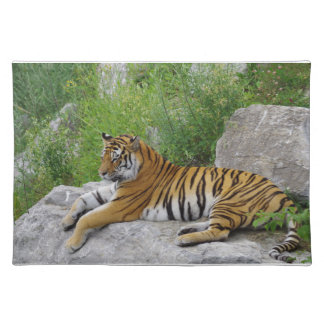 Siberian Tiger Relaxing on a Rock Cloth Placemat