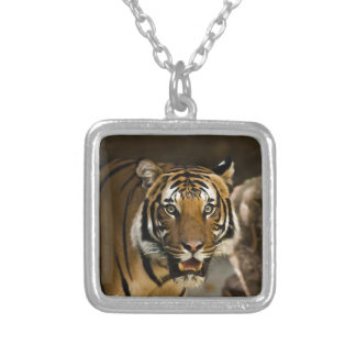 Siberian Tiger Silver Plated Necklace