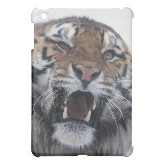 Siberian Tiger Snarling iPad Mini Covers