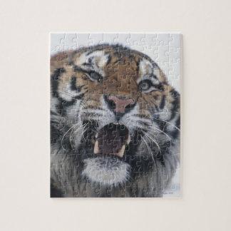 Siberian Tiger Snarling Jigsaw Puzzle