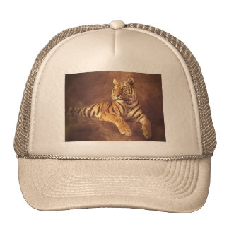 Siberian Tiger - Trucker Hat