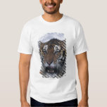 Siberian Tiger Yawning Shirt