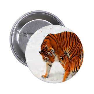 siberian tigers mom  love and joyce pinback button