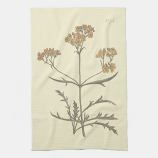 Siberian Valerian Botanical Illustration Hand Towel