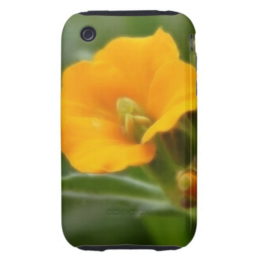 Siberian Wallflower Buds And Flower Tough iPhone 3 Covers