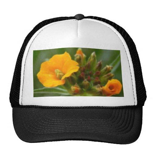 Siberian Wallflower Buds And Flower Trucker Hat