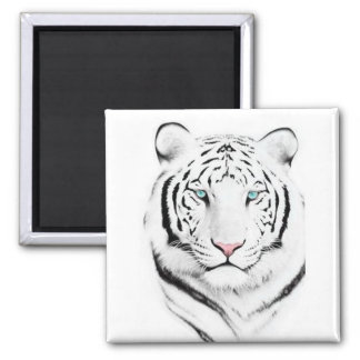 Siberian White Tiger Refrigerator Magnets