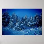 Siberian Winter Poster