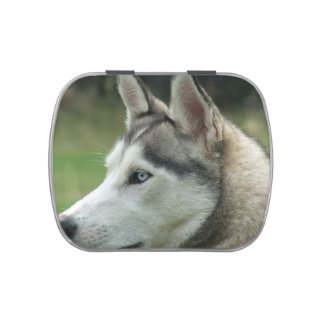 Siberiano Huskey Latas De Caramelos