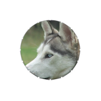 Siberiano Huskey Frascos De Dulces