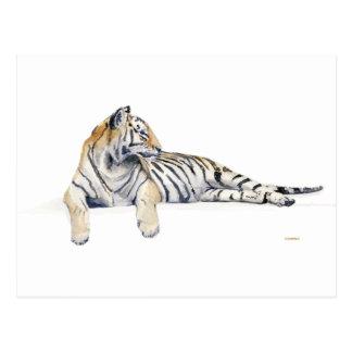 Siberiano/tigre de Bengala Postal