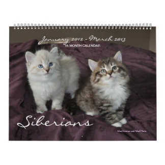 Siberians Cats Kittens 2012 - 2013 Calendar