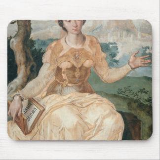 Sibila de Maerten van Heemskerck- The Erythraean Tapetes De Raton