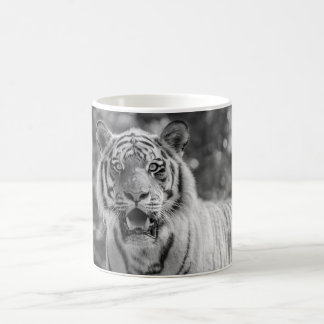 Sibirian Tiger Coffee Mug