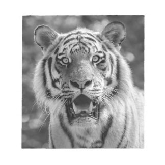 Sibirian Tiger Notepad
