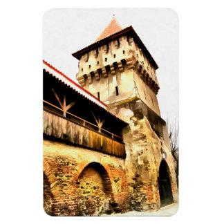 Sibiu Carpenter's tower painting Vinyl Magnet