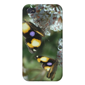 Sibling butterflies iPhone 4 case