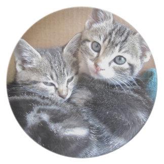 Sibling Kitties Party Plate