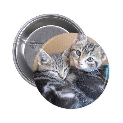 Sibling Kitties Pin