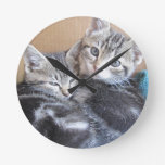 Sibling Kitties Round Clock