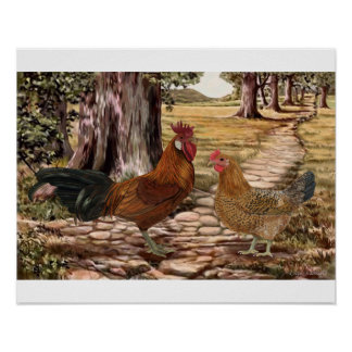 Sicilian Buttercup Rooster and Hen Poster