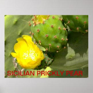 SICILIAN PRICKLY PEAR POSTER
