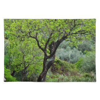 Sicilian spring landscape cloth placemat