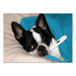 Sick Day Doggie Greeting Cards