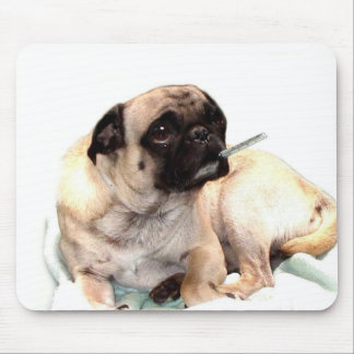 Sick pug with thermometer mousepad