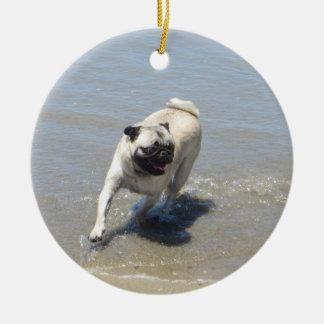 Sid el barro amasado en la playa del perro, San Di Adornos De Navidad