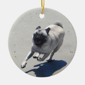 Sid el barro amasado en la playa del perro, San Di Adornos