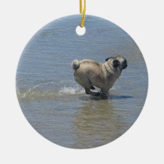 Sid el barro amasado en la playa del perro, San Di Ornamento De Navidad