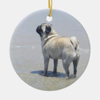 Sid el barro amasado en la playa del perro, San Di Adorno De Reyes