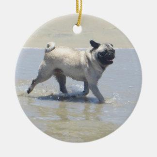 Sid el barro amasado en la playa del perro, San Di Adorno